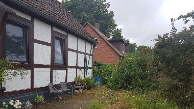 Garten I 768x432 - Noch-alles-Wildnis
